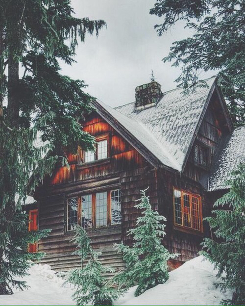 beautiful-house-forest-gorgeous-hipster-Favim.com-2389493