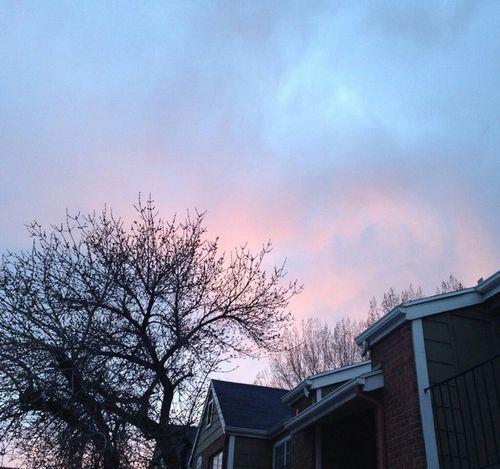 beauty-blue-home-pink-Favim.com-2595002