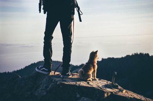 adventure-beautiful-cali-california-Favim.com-3700931