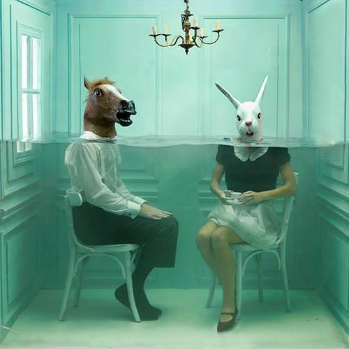 head-horse-love-madness-Favim.com-1060307
