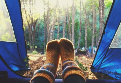 camping-fluffy-forest-indie-favim-com-2562516