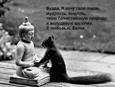 snimi_triko_06