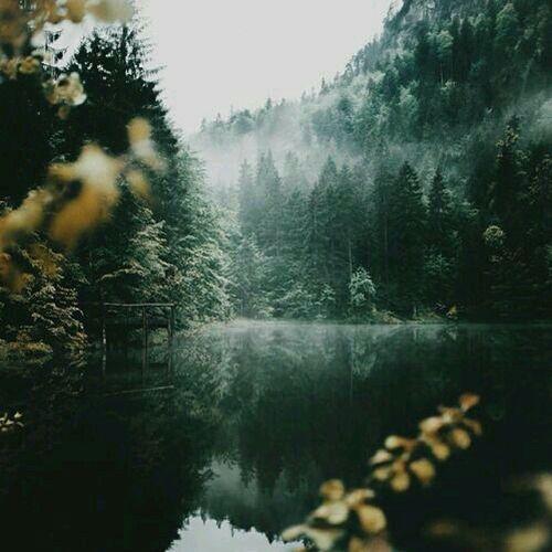 cozy-inspiration-landscapes-magical-favim-com-3932513